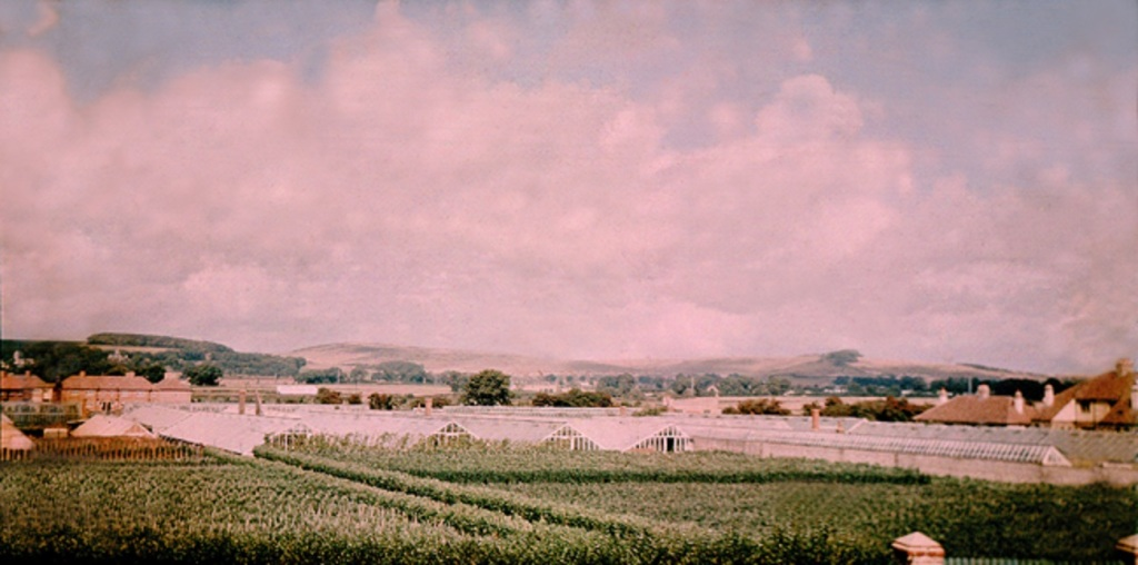 Figure 4. Panoramic view towards the South Downs, showing Paramatta Vineries on the north side of Brougham Road (1938)
