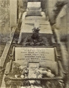 Fig. 12 Grave of James Linfield (1855-81)